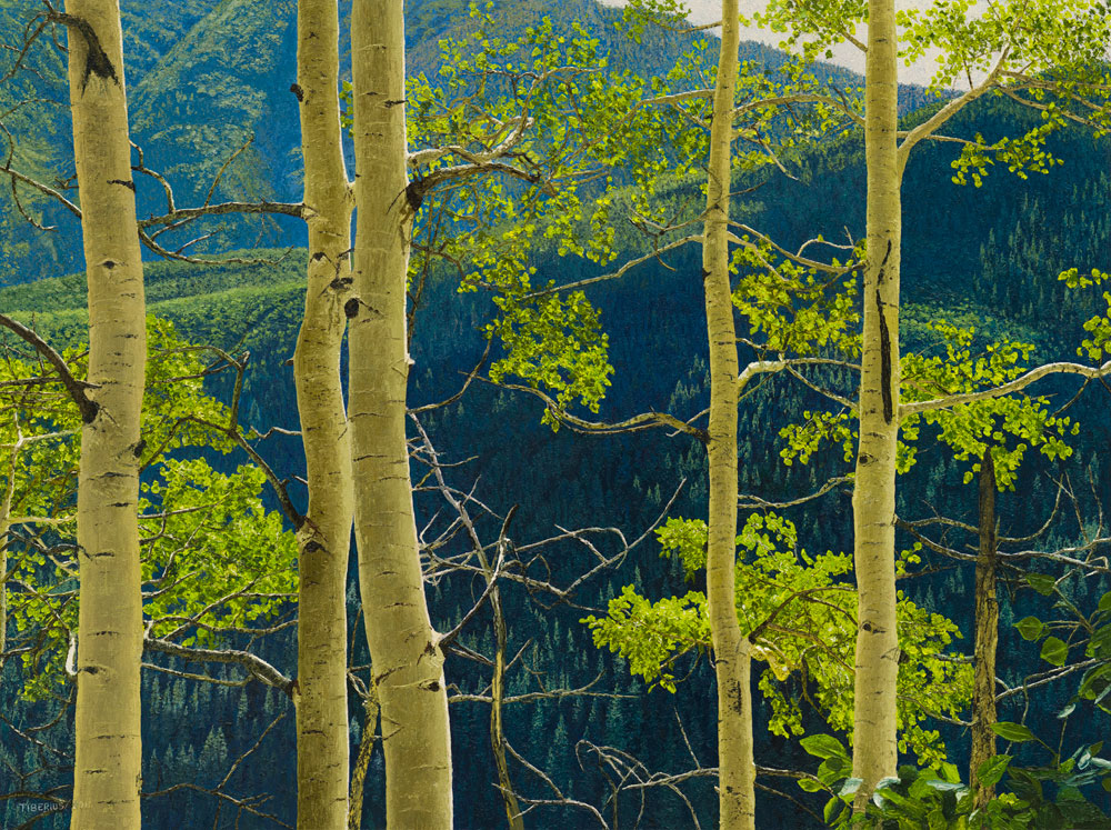 Backlighted Aspen on a Mountain Trail (sold)  |  Richard G. Tiberius