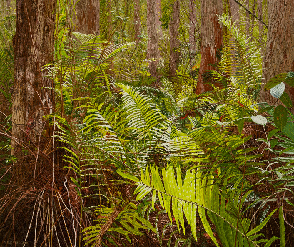 Ferns among the Cypress Trees (sold)  |  Richard G. Tiberius