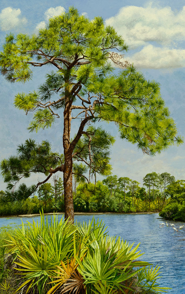 Pines and Palmetto on Estero Bay (sold)  |  Richard G. Tiberius