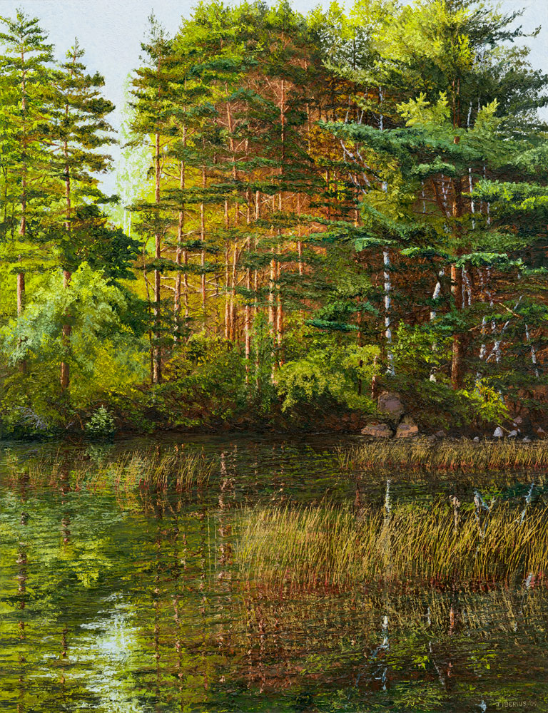 Scots Pines and Rushes (sold)  |  Richard G. Tiberius