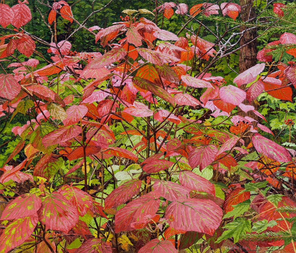 Viburnum Surprises (sold)  |  Richard G. Tiberius