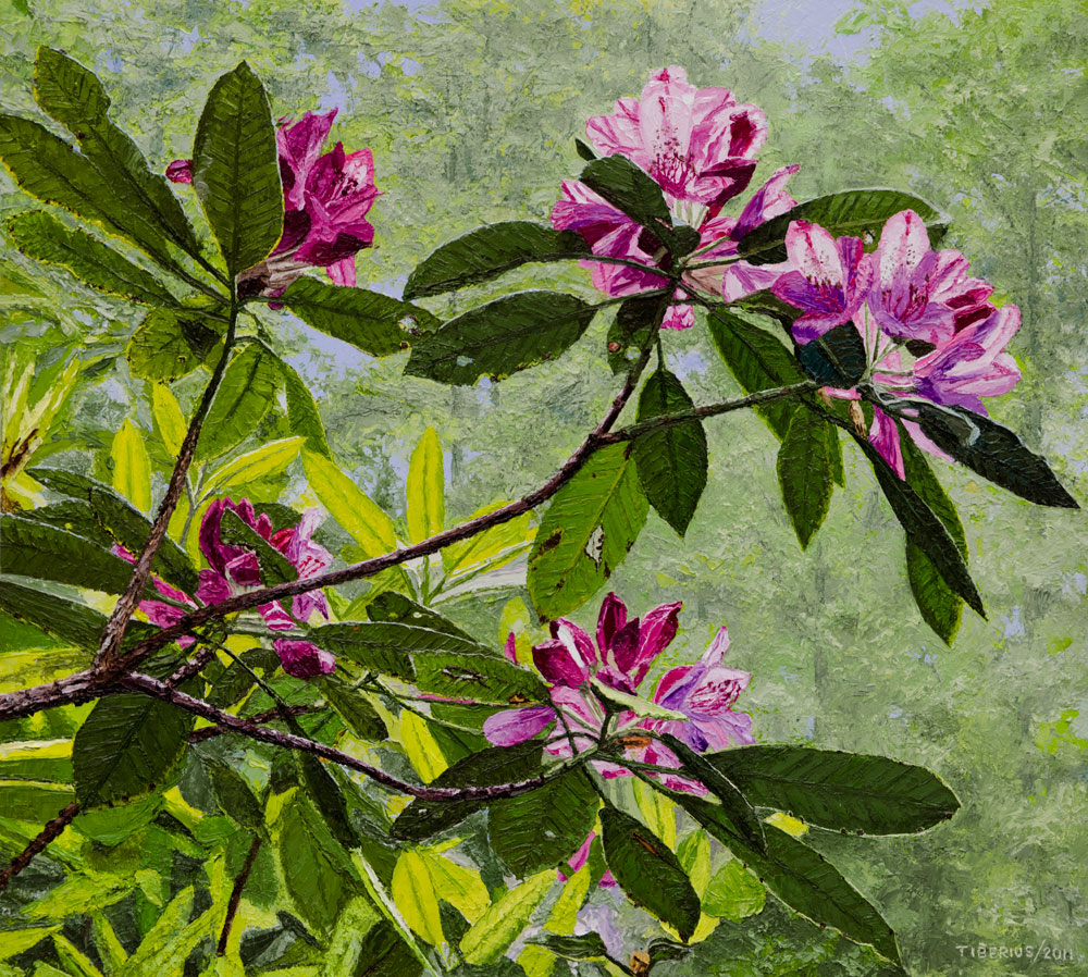 Under the Rhododendrons (sold)  |  Richard G. Tiberius