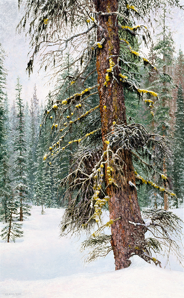 Painting Wild Nature with knives: Choosing the Subject