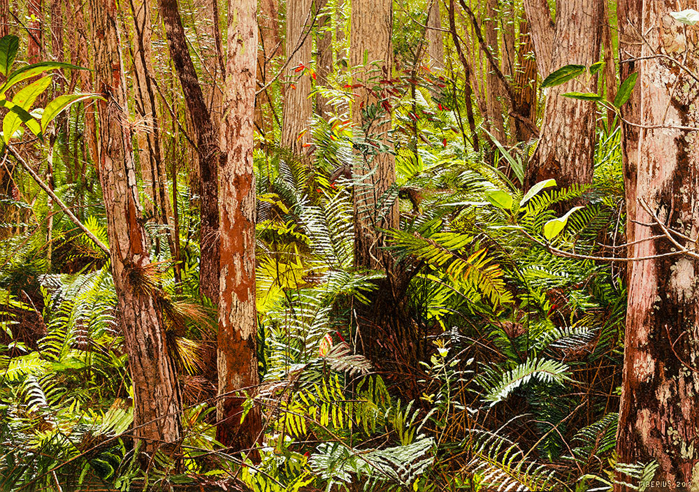 Bald Cypress with Ferns (sold)  |  Richard G. Tiberius