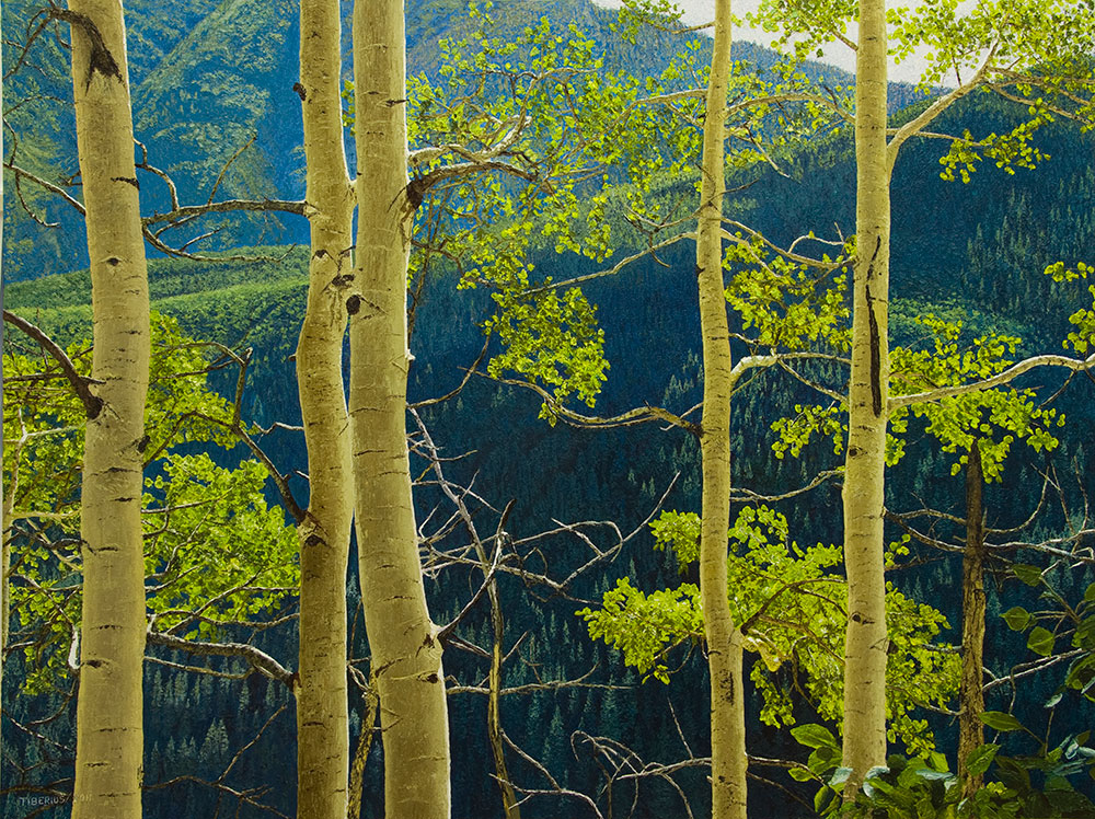 Backlighted Aspen on Mountain Trail – Progression