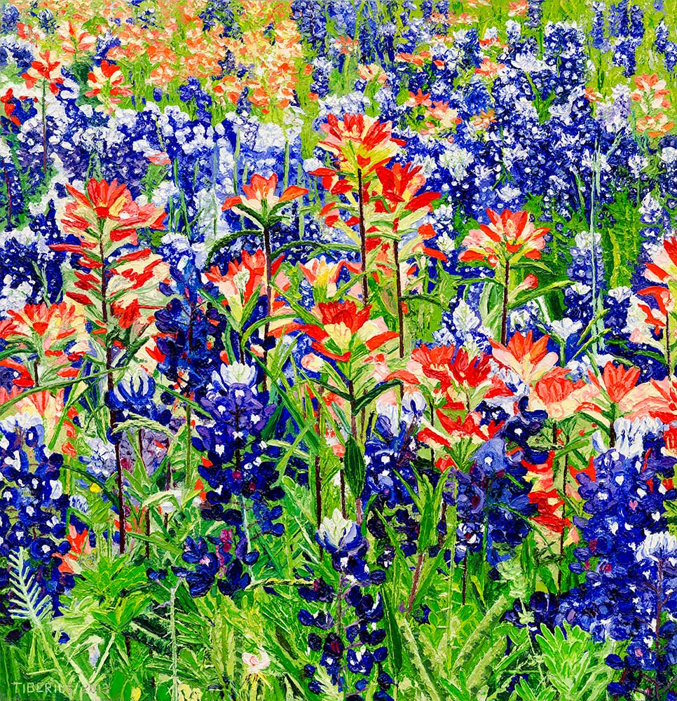 Texas Bluebonnets and Texas Paintbrushes  |  Richard G. Tiberius