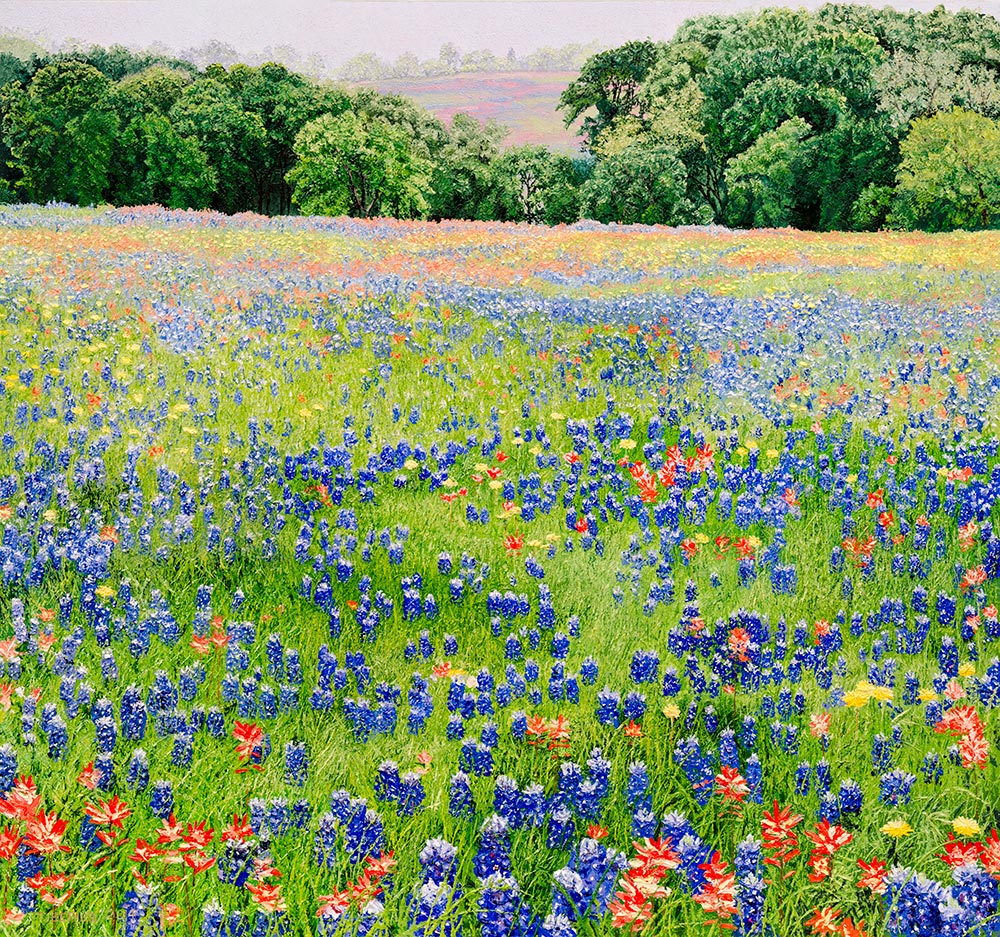 The Return of Texas Wildflowers (sold)  |  Richard G. Tiberius