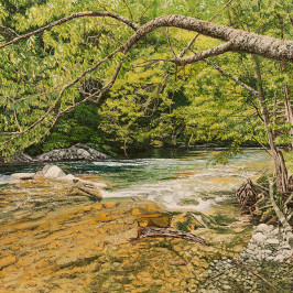 Smoky Mountain River in Early Spring (sold)  |  Richard G. Tiberius