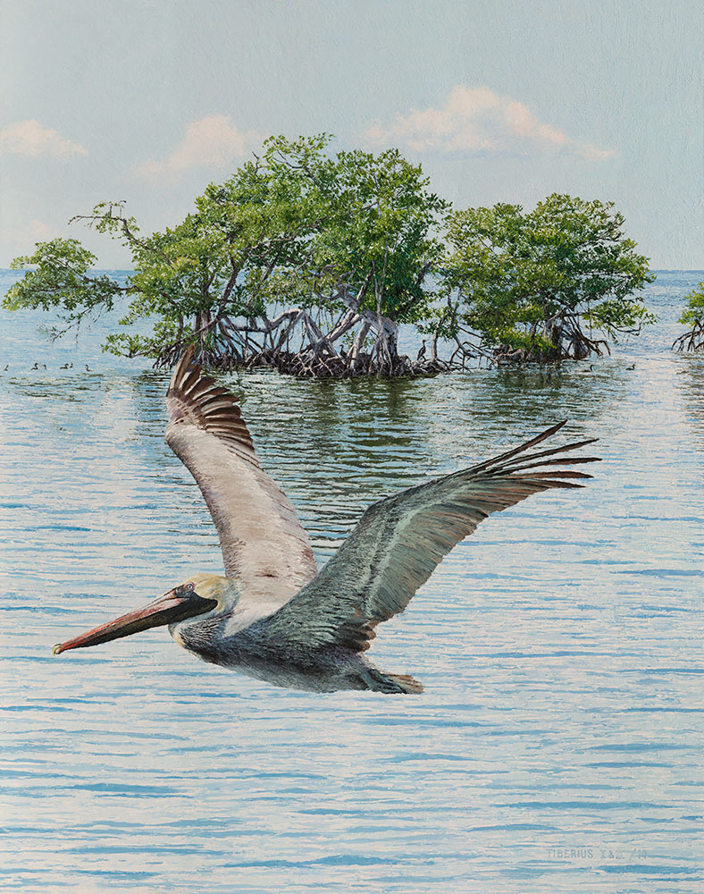 Red Mangroves, Ten Cormorants and a Pelican (sold) | Kiry Tiberius & Richard Tiberius