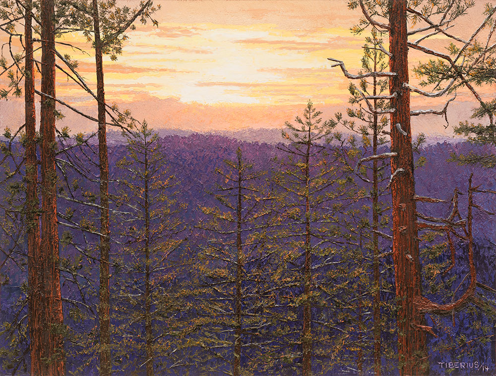 Sunset through the Pines | Richard G. Tiberius