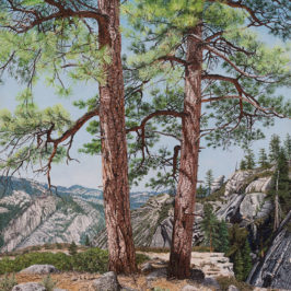 Two Ponderosa Pines | Richard G. Tiberius