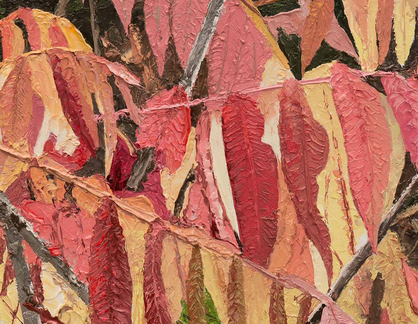 Sumac, Up-Close, Detail