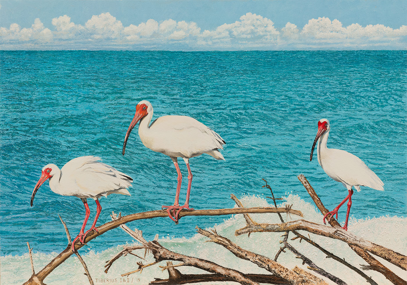 Three Ibises on Driftwood | Kiry Tiberius & Richard Tiberius